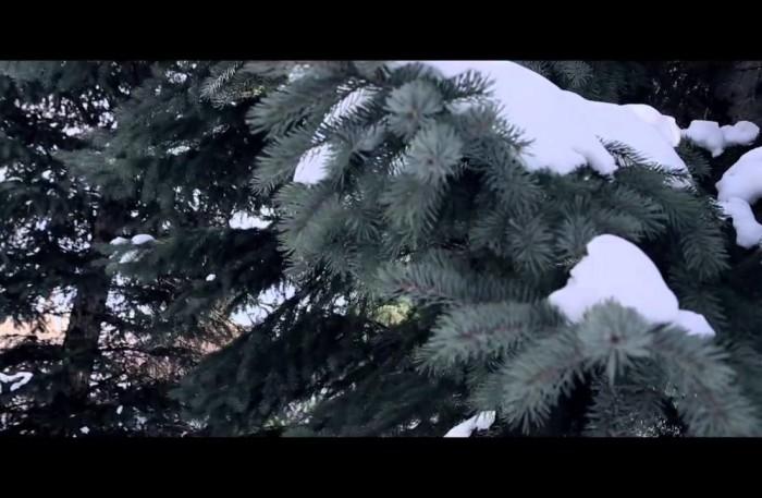 #NewVideo @ZionI x @DaLocksmith – Culture Freedom